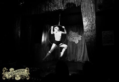 DizzE Doll - Aerial Hoop