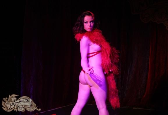 Dahlia Dangerous - Photo by Natasha Halliday Photography